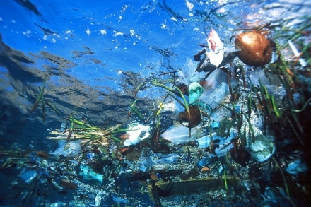 The Great Pacific Garbage Patch may contain over 100 million tons of debris and is nearly the size of the continental United States.